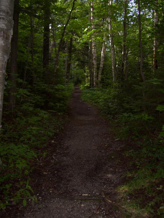 Soft trail
