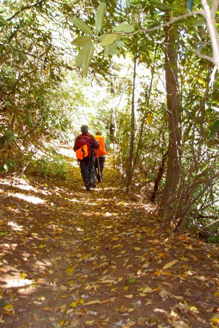 Soft Georgia Trail