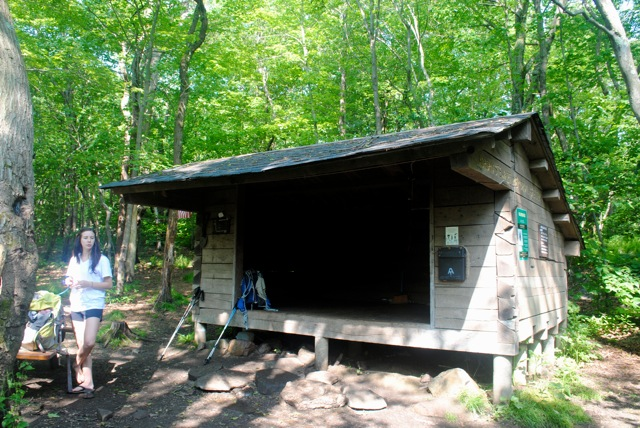 Morgan Steward Shelter