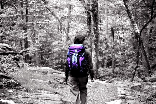 Hiking towards Dark Hollow Falls