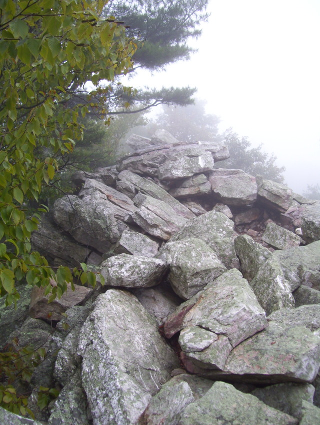 100_2521 Trail