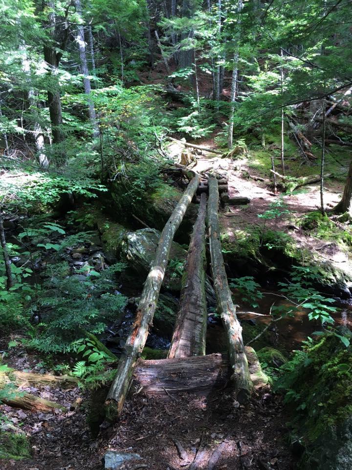 3 Log bridge